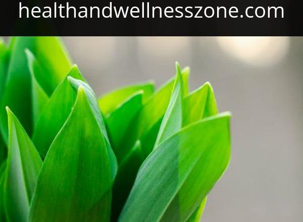 How You Can Treat Your Anxiety with These Amazing Herbal Medicines