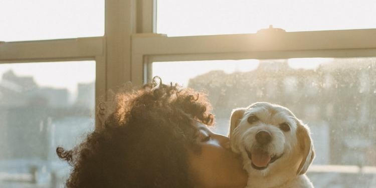 Embracing the Life of a Dog Mom